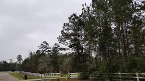 Houston Home at 11570 Sebastians Run Montgomery , TX , 77316 For Sale