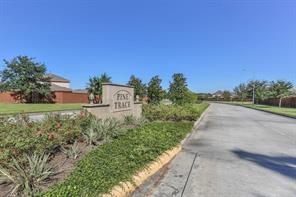 23006 Silver Linden, Tomball, TX, 77375