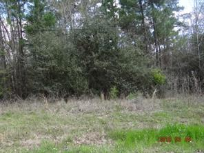 Houston Home at TBD Holliman Drive Livingston , TX , 77351 For Sale