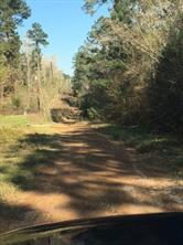 Houston Home at Lot 239/2 Brantley Drive Livingston , TX , 77351 For Sale