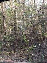 Houston Home at Lot 274/2 Brantly Drive Livingston , TX , 77351 For Sale