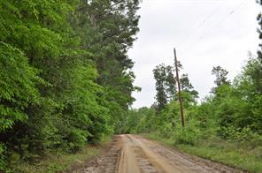 97 acres cr 364, zavalla, TX 75949