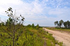 112 ac hamilton road, groveton, TX 75845