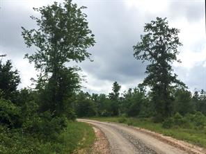 22 Ac Willow Springs, Oakhurst TX 77359