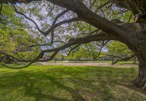 406 oak drive, friendswood, TX 77546