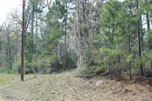 Houston Home at 25 Creeklake Drive Onalaska , TX , 77360 For Sale