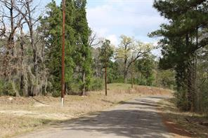 Houston Home at 16 Wiggins Circle Onalaska , TX , 77360 For Sale