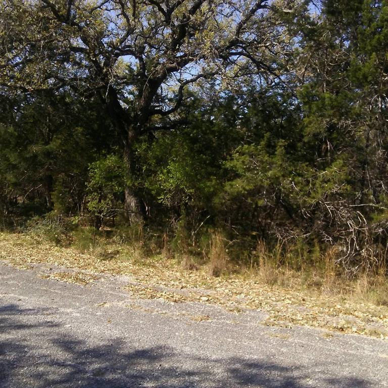 21911 Cardinal Avenue, Lago Vista, TX 78645