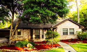 23014 Squirrel Tree Street, Spring, TX 77389