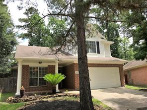 31 Willow Point, Spring, TX, 77382
