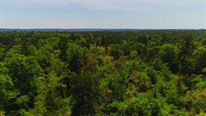 Houston Home at 384 Acres State Highway 75 North Huntsville , TX , 77320 For Sale