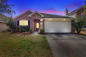 13404 Baron Hill Lane, Rosharon, TX 77583