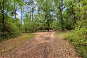 21152 Country Pines Road, Magnolia, TX 77355