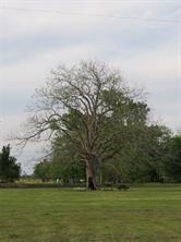 Houston Home at #8 Cheyenne Road Simonton , TX , 77485-7280 For Sale