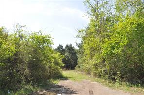 974 fm 1131, pine forest, TX 77662
