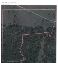 0000 CR 142, Hallettsville, TX 77964
