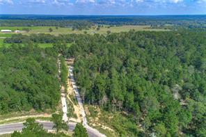 Houston Home at 140142 Dedication Trail Huntsville , TX , 77340 For Sale