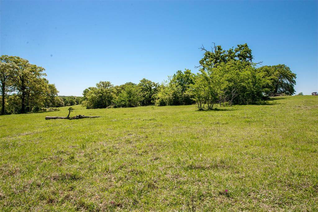 (+/-29.41 acres) County Road 305, Rockdale, TX 76567