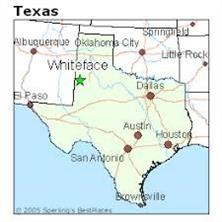 06 east of highway 125, whiteface, TX 79379