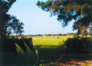 Houston Home at 4804 Johnson Lane Bellville , TX , 77418-8878 For Sale