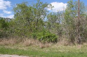 Houston Home at Lot 87 Ash Drive Brazoria , TX , 77422 For Sale