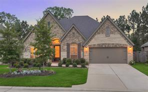 Houston Home at 110 Diamond Back Lane Montgomery , TX , 77316-1583 For Sale
