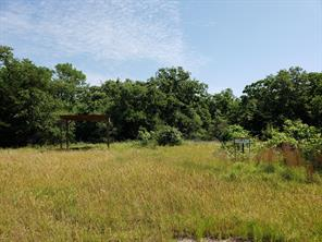 40 Acres CR 331C, Milano TX 76556