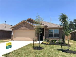 23130 royal tiger, other, TX 77373