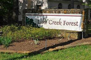 10 Creek Forest, Conroe, TX, 77384