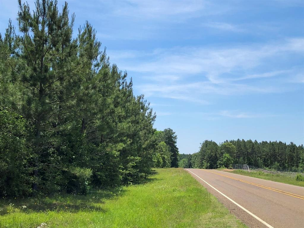 985 Ac FM 2991, Burkeville, TX 75932