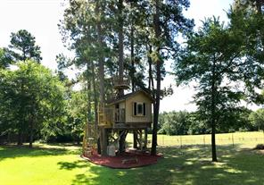 A closer view of the treehouse showing the crow's nest.