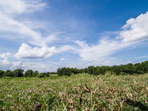 Houston Home at 1324 Sh 75 Huntsville , TX , 77320 For Sale
