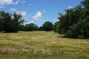 405 Pony, Angleton, TX, 77515