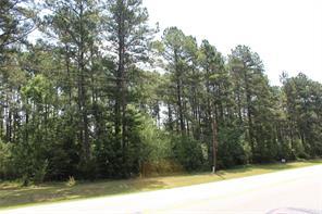 Houston Home at Lots 8 9 Farm Road 3126 Livingston , TX , 77351 For Sale