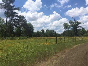 12.24 acres cr 4240, bronson, TX 75930