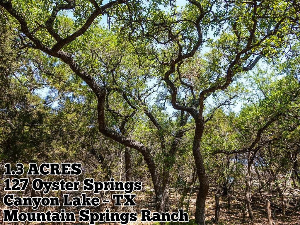 127 Oyster Springs, Canyon Lake, TX 78133