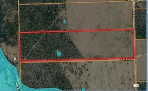 299 nink, smithville, TX 78957