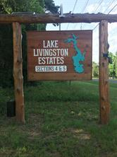 Houston Home at TBD Big Lake Drive Livingston , TX , 77351 For Sale