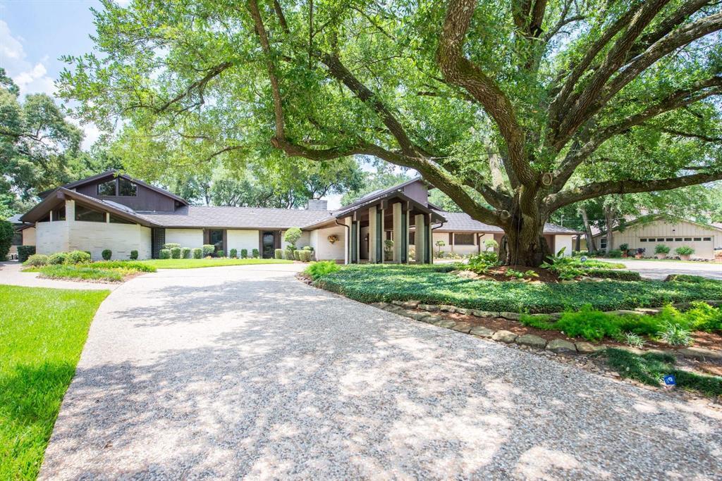 14107 Bonney Brier Drive, Houston, TX 77069