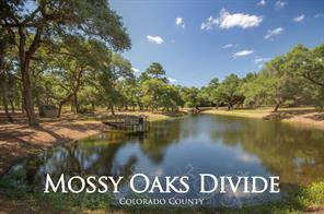 Houston Home at 1069A Mossy Oaks Lane New Ulm , TX , 78950 For Sale