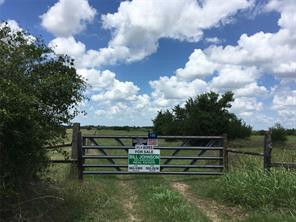 Houston Home at 0 Walnut Street New Ulm , TX , 78950 For Sale
