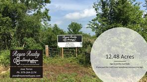 Houston Home at 0000 Hwy 35 Highway Liverpool , TX , 77577 For Sale