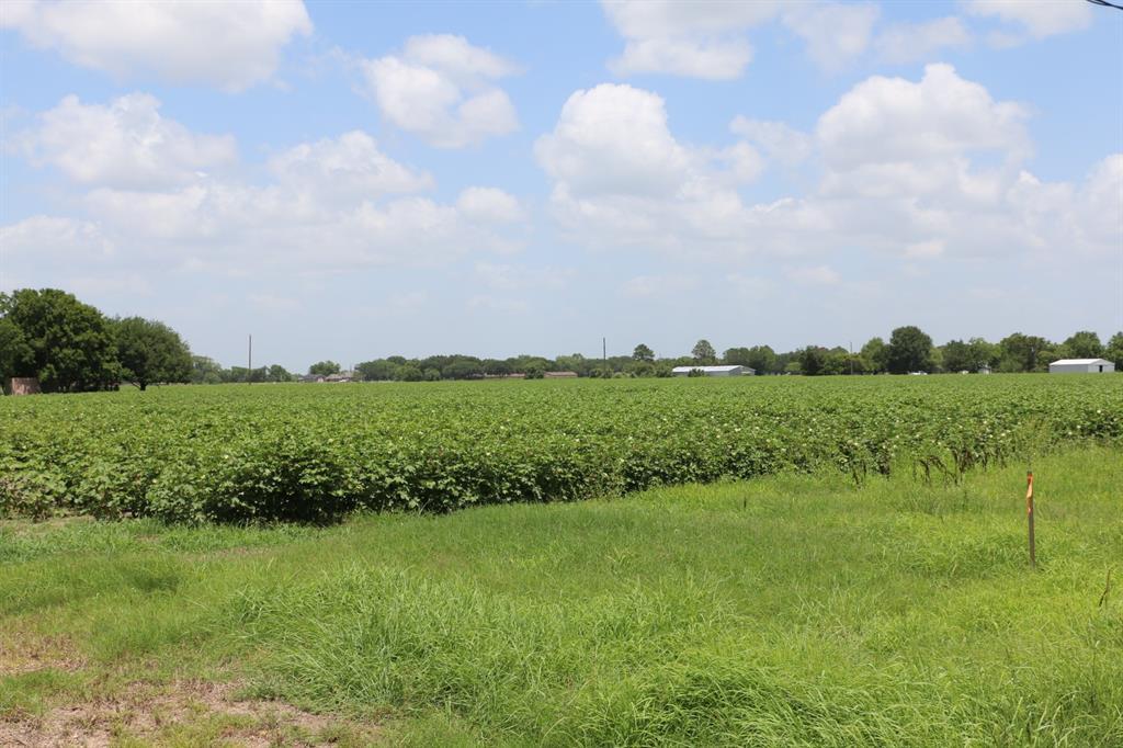 11323 Old Needville Fairchilds Road, Needville, TX 77461