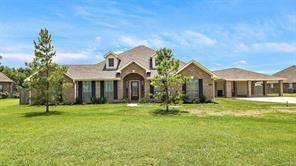 28003 Palm Breeze Lane, Rosharon, TX 77583