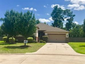 Houston Home at 166 Shadow Springs Trail Magnolia , TX , 77354-1525 For Sale