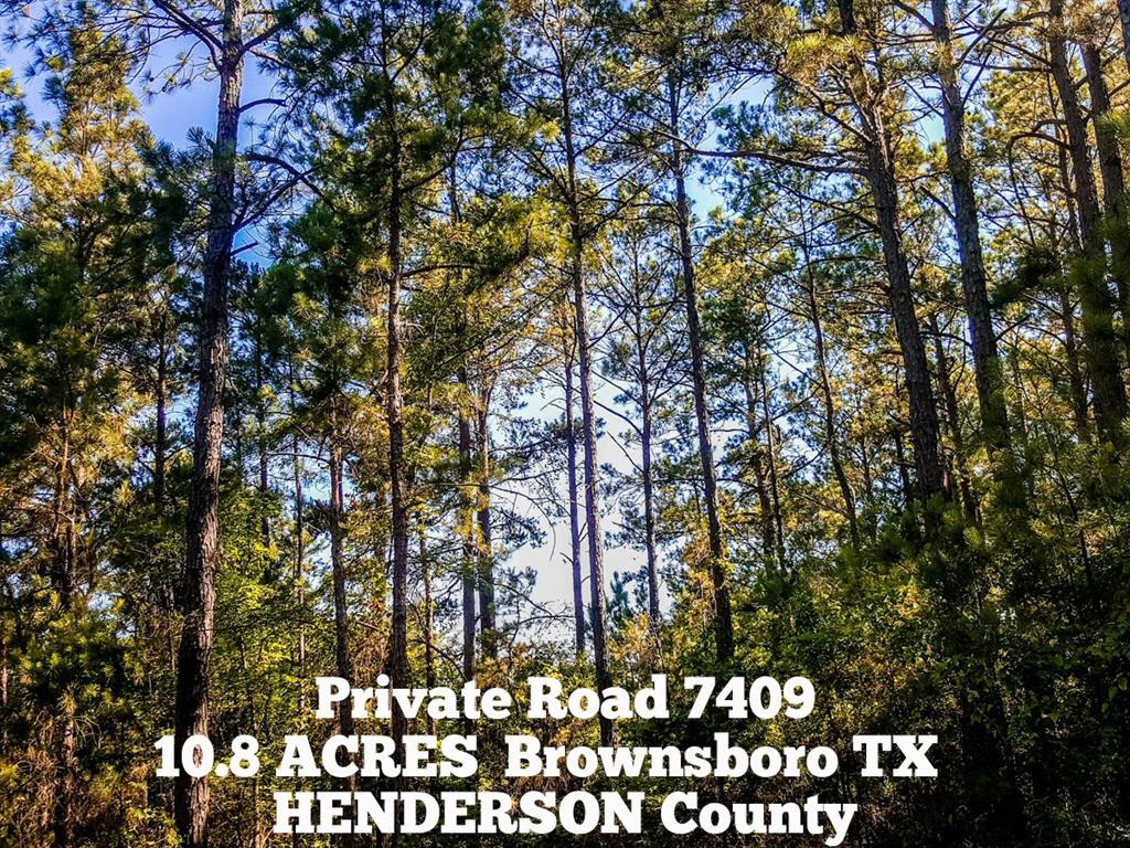 10.8-ac Pvt Rd 7409 - off County Road 3406, Brownsboro, TX 75756