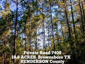 10.8-ac Pvt Rd 7409 - off County Road , Brownsboro TX 75756