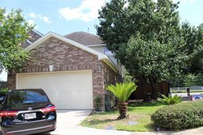 10219 emerald oaks drive, houston, TX 77070