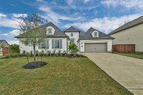 Houston Home at 10318 Terra Street Iowa Colony , TX , 77583 For Sale