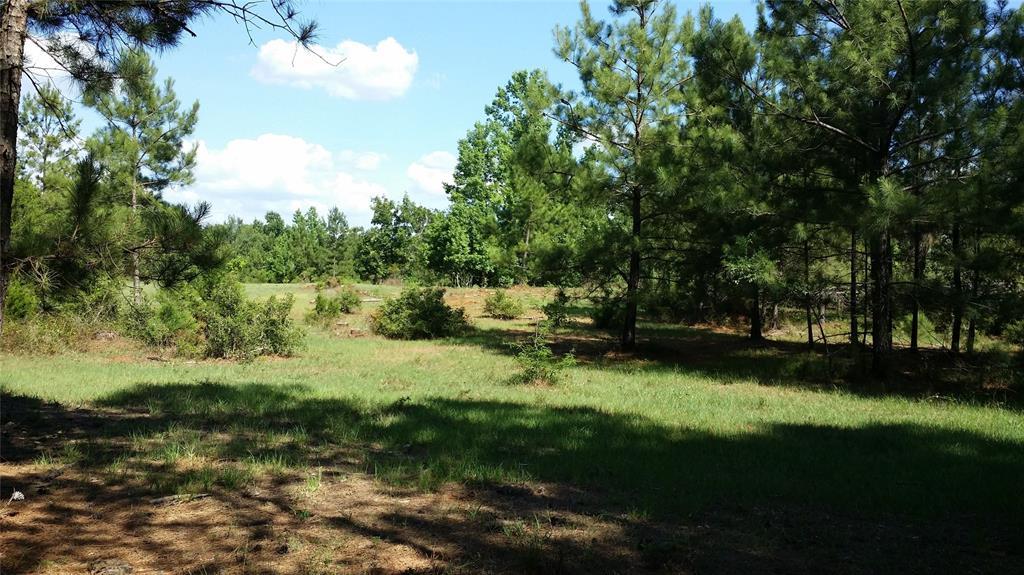 3489 County Road 1585 Road, Grapeland, TX 75844